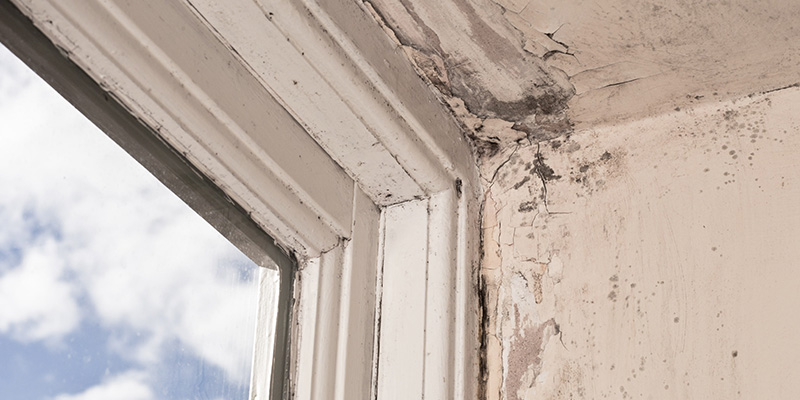 decaying window frames