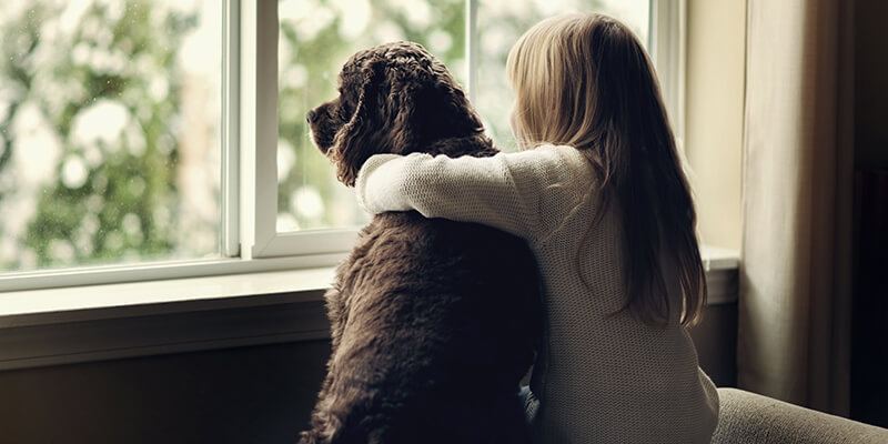 Dog and young girl looking out of the window